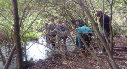 Biwak survivalowy klasy 2a VII LO w Binowie